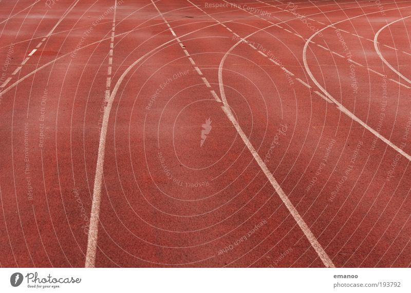 run straight curved Sports Track and Field Sportsperson Success Loser Jogging Sporting Complex Stadium Racecourse Movement Walking Line Curve Arch