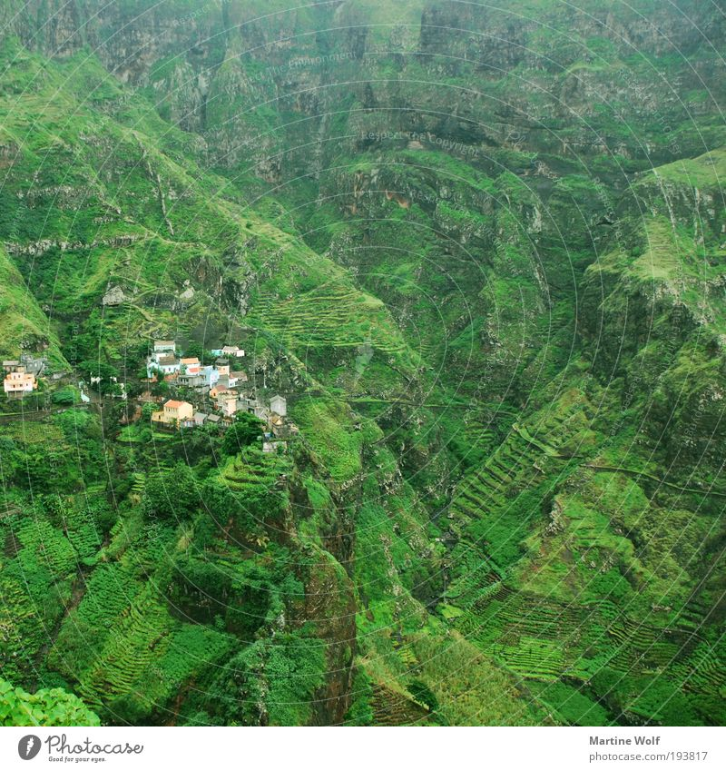 green in green in green in green in green Vacation & Travel Trip Adventure Far-off places Freedom Expedition Mountain Hiking Nature Landscape Canyon Cabo Verde