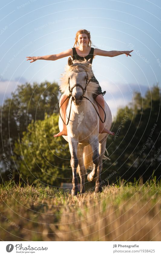 """""""Have a dream about it"""" Ride Equestrian sports Feminine Young woman Youth (Young adults) Body Hair and hairstyles 18 - 30 years Adults Nature Landscape Summer"""