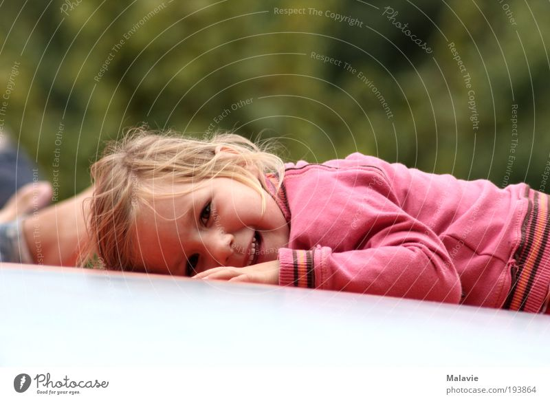A smile is still possible.... Joy Playing Trip Human being Toddler Girl 1 3 - 8 years Child Infancy Nature Beautiful weather Bushes Park Sweater Blonde
