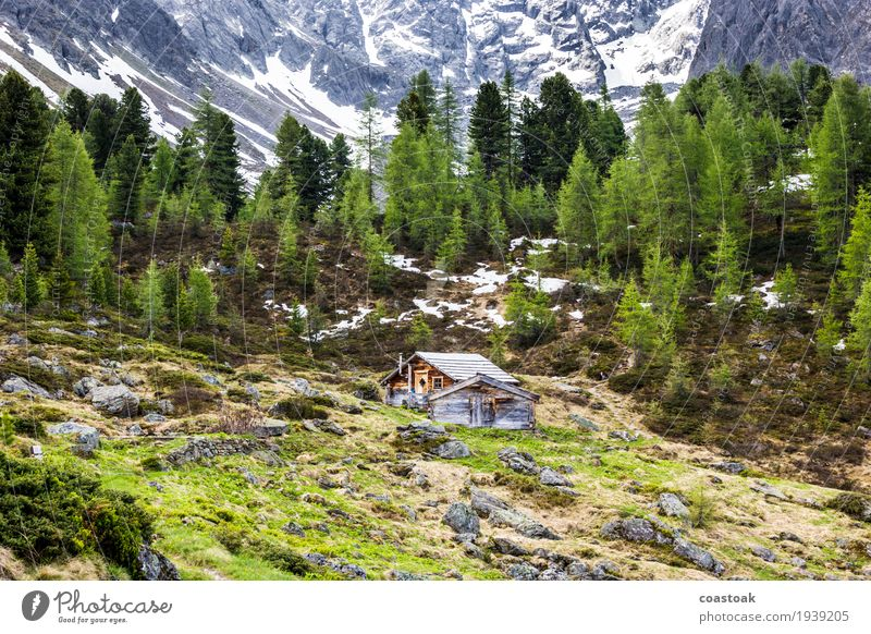 Mountain hut near the mountain lake Plant Spring Tree Grass Rock Alps Deserted Hut Relaxation Blue Green Quaint Loneliness Remote refugium Retreat Colour photo