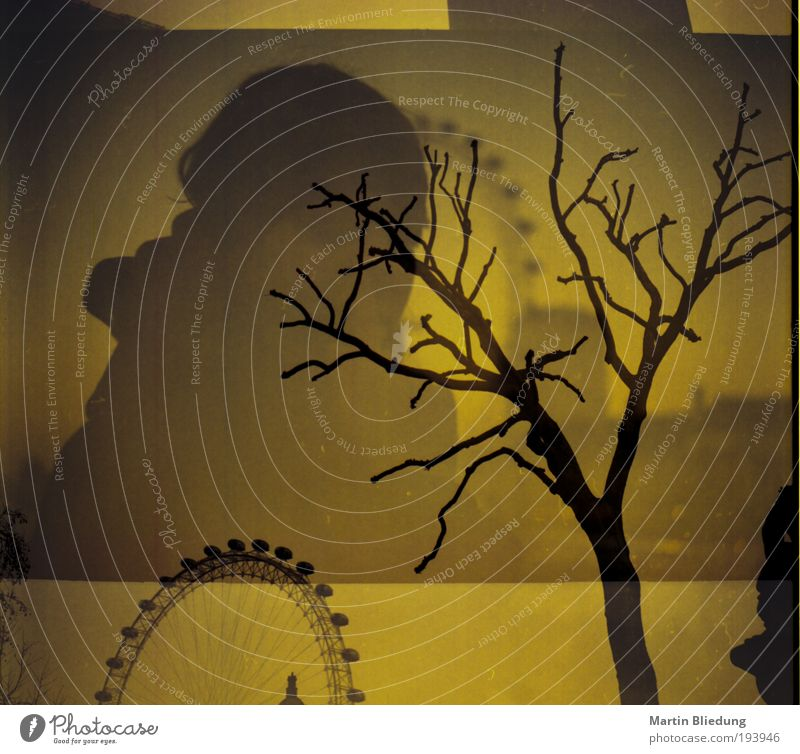 Human being Tree Vacation & Travel Black Loneliness Yellow Autumn Dark Life Emotions Dream Art Brown Wait Dangerous Exceptional