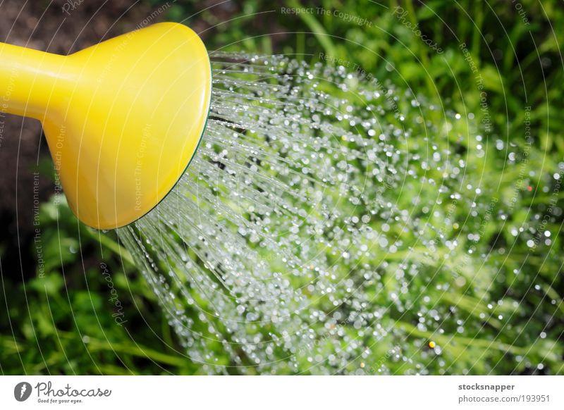 Watering Watering can Tin spout Liquid Drop Trickle Garden Gardening Summer outdoor Exterior shot