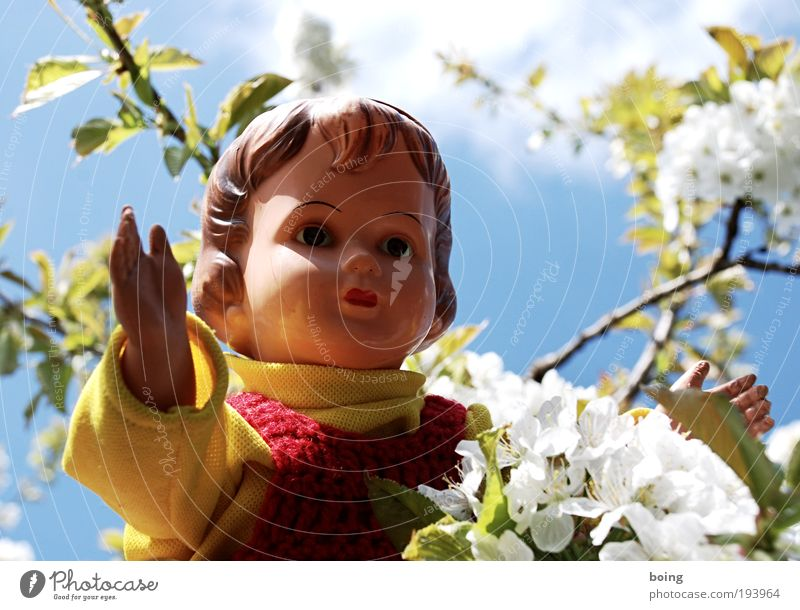 Child Girl Emotions Playing Blossom Happy Trip Easter Leisure and hobbies Climbing Toys Infancy Blossoming Doll Beautiful weather Safety (feeling of)