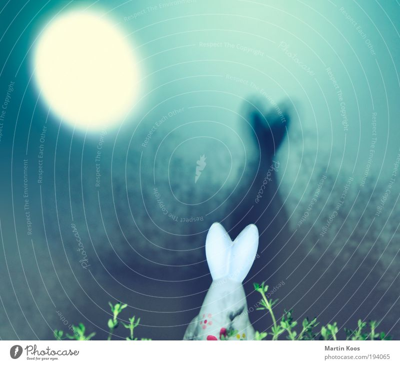 Joy Flower Forest Meadow Dark Spring Dream Feasts & Celebrations Ear Decoration Easter Moon Hunting Whimsical