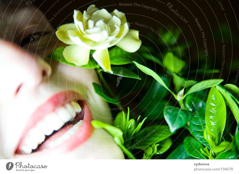 Human being Woman Youth (Young adults) Beautiful Plant Flower Joy Face Adults Life Laughter Happy Style Dream Healthy Contentment