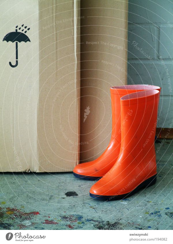 Vacation & Travel Rain Footwear Weather Wet Trip Package Rubber boots Bad weather Nature Light