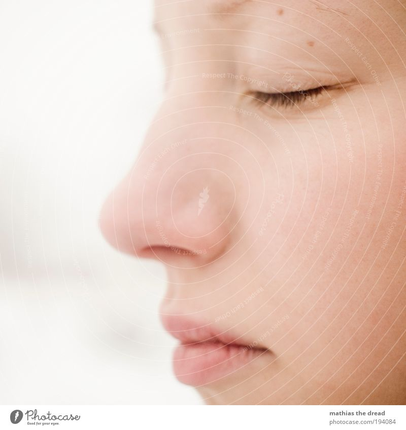 Human being Youth (Young adults) Beautiful Calm Face Eyes Feminine Mouth Natural Nose Sleep Uniqueness Soft Transience Ear Lips