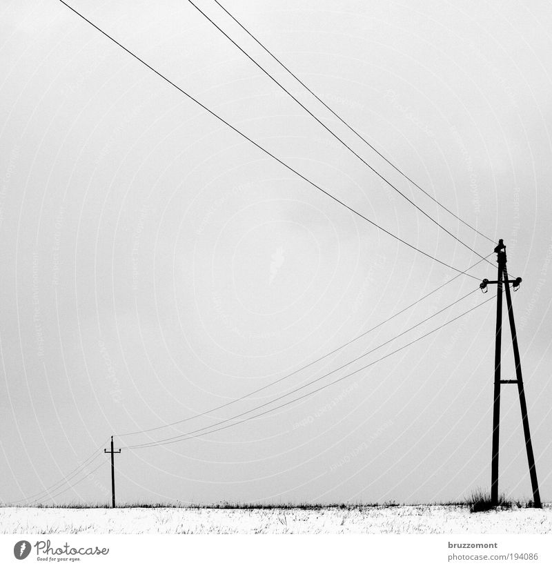 _i____Ä Electricity Transmission lines High voltage power line Energy industry Winter Snow Dreary Gray Black & white photo Cold Electricity pylon Clouds Rural