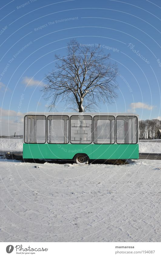 winter sales Winter Beautiful weather Ice Frost Snow Tree Outskirts Trailer Stall Poverty Cold Clean Gloomy Blue White Hope Boredom Wanderlust Loneliness Idyll