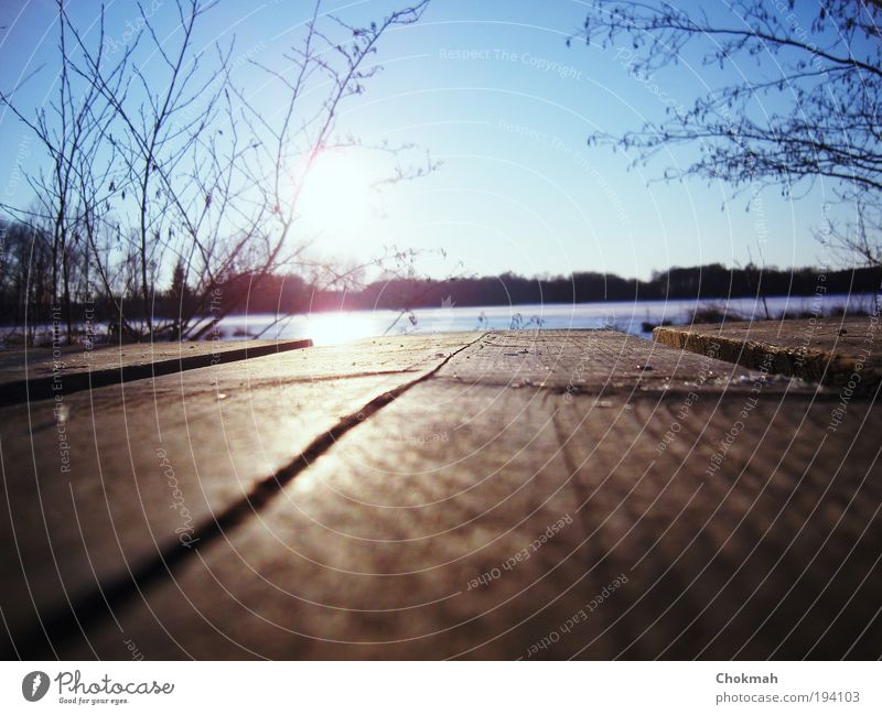 Sky White Sun Blue Winter Calm Cold Freedom Wood Lake Moody Brown Idyll Footbridge