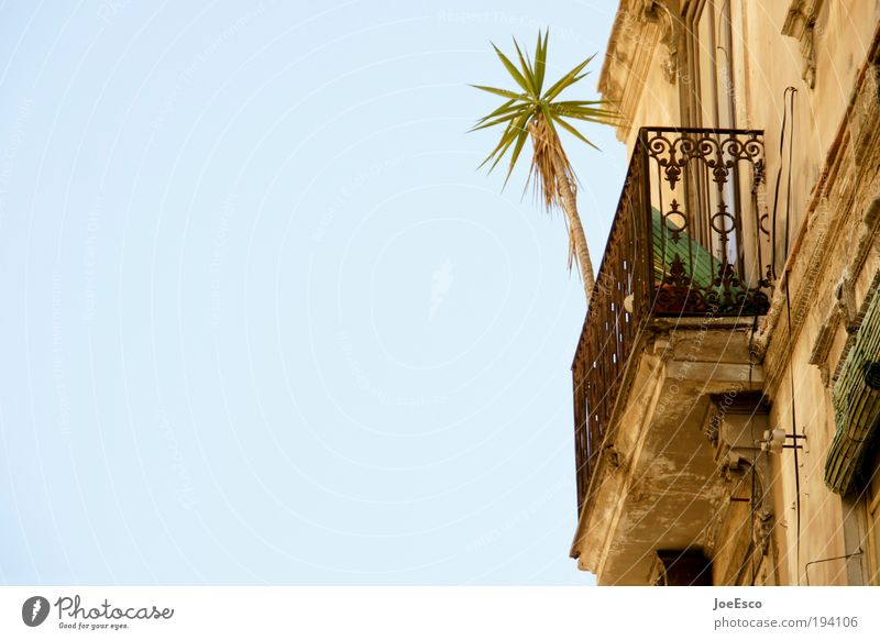 Beautiful Sun Summer Vacation & Travel House (Residential Structure) Relaxation Wall (building) Wall (barrier) Warmth Facade Lifestyle Tourism Living or residing Balcony Spain Palm tree