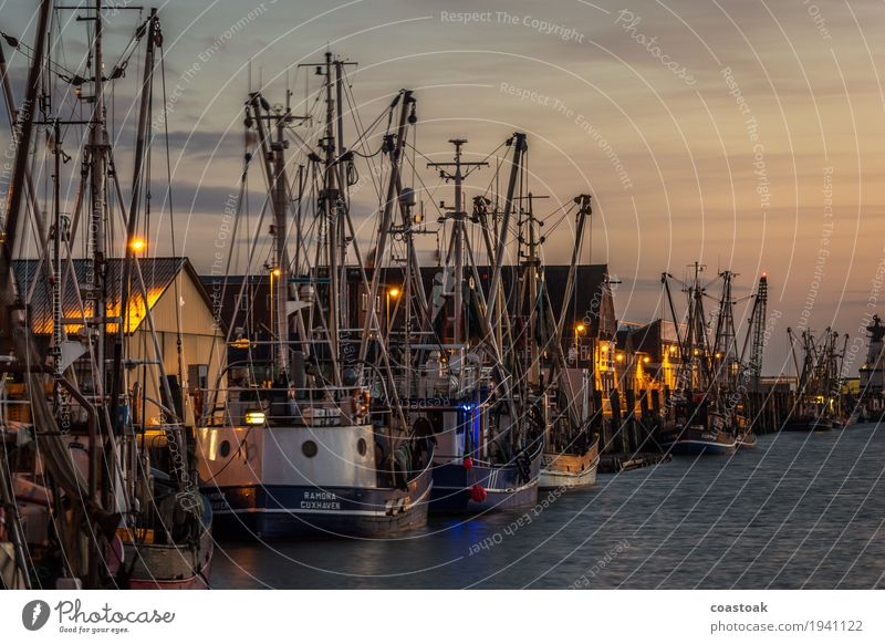 Crab cutter in Cuxhaven Fisherman Fishery Water Coast Ocean Port City Navigation Fishing boat Shrimp Work and employment Sharp-edged Simple Fresh Brave