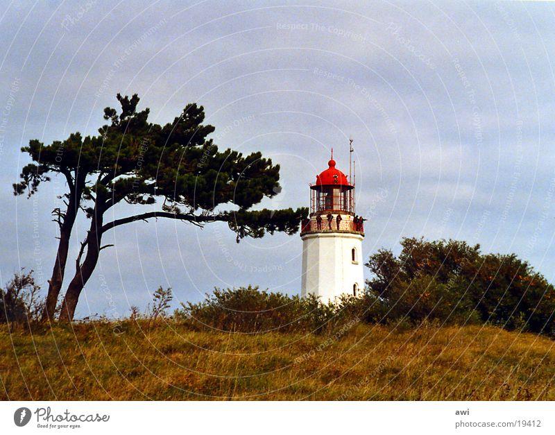 brier Hiddensee Lighthouse Tree Grass Hill Green Red Lake Navigation Island Blue