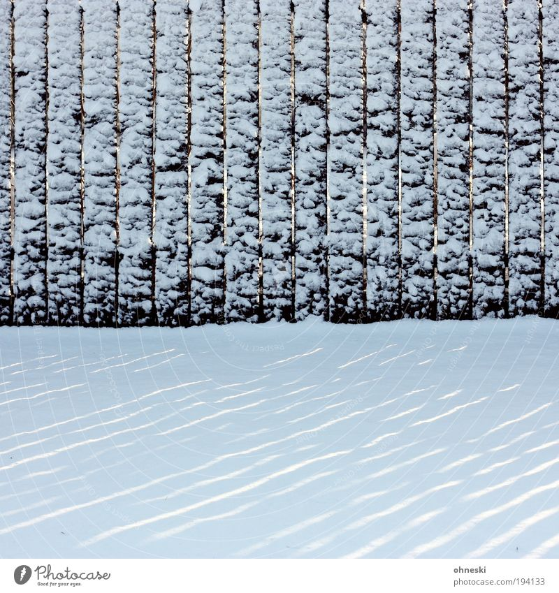 The day after Winter Climate Climate change Weather Storm Gale Ice Frost Snow Garden Cool (slang) Cold White Fence Fence post Stripe Line Lined Subdued colour