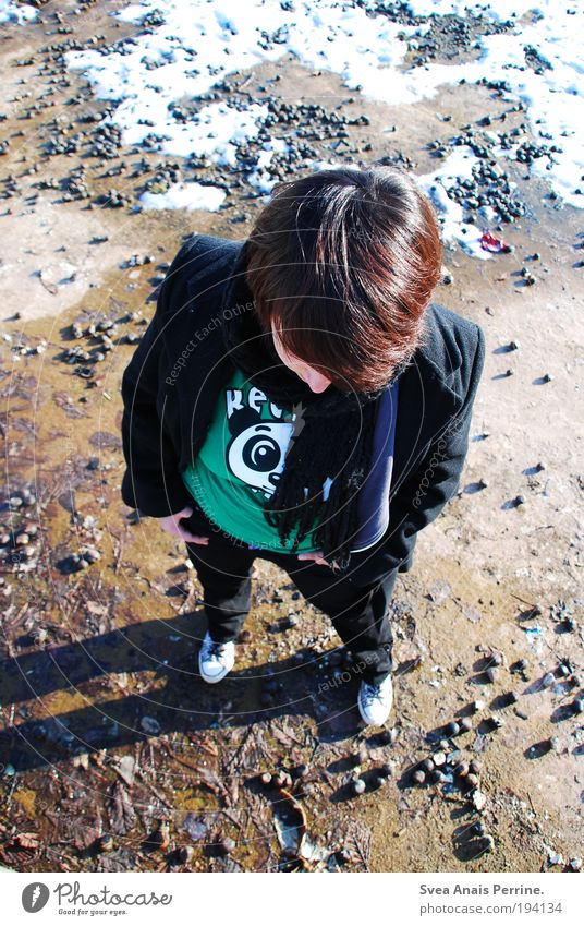 panda. Joy Head 1 Human being T-shirt Pants Footwear Brunette Short-haired Observe Looking Stand Green Panda Snow Chestnut Colour photo Multicoloured