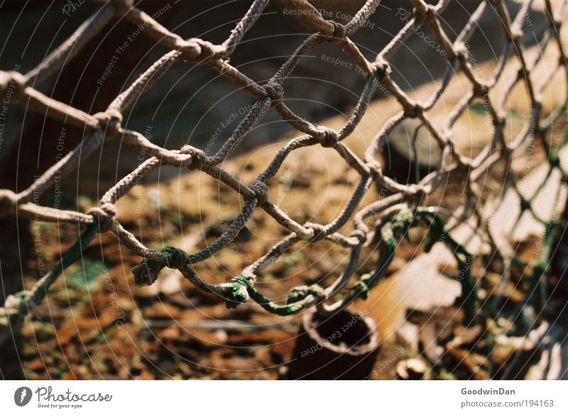 Analogous courage to fill the gap Net Wreck Discover Relaxation Hang Old Sharp-edged Broken Colour photo Exterior shot Twilight Shallow depth of field
