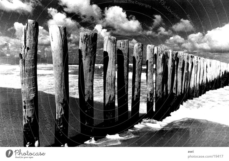 Clouds and sea Beach Ocean Wood Netherlands White crest Lake Break water Sky Contrast Black & white photo Pole