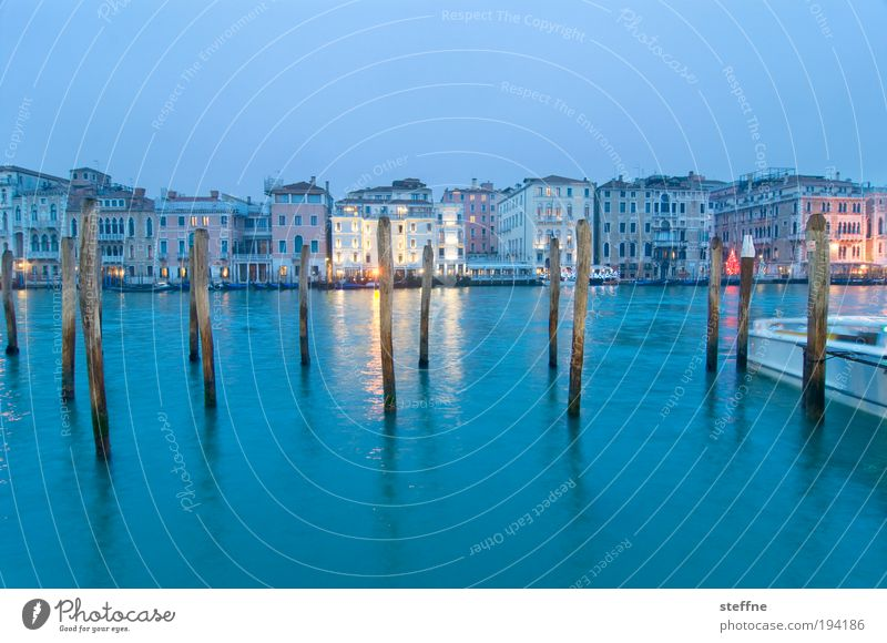 blue monday Venice Italy Port City Downtown Old town Uniqueness Vacation & Travel Canal Grande Wooden stake Twilight Blue Colour photo Exterior shot Deserted