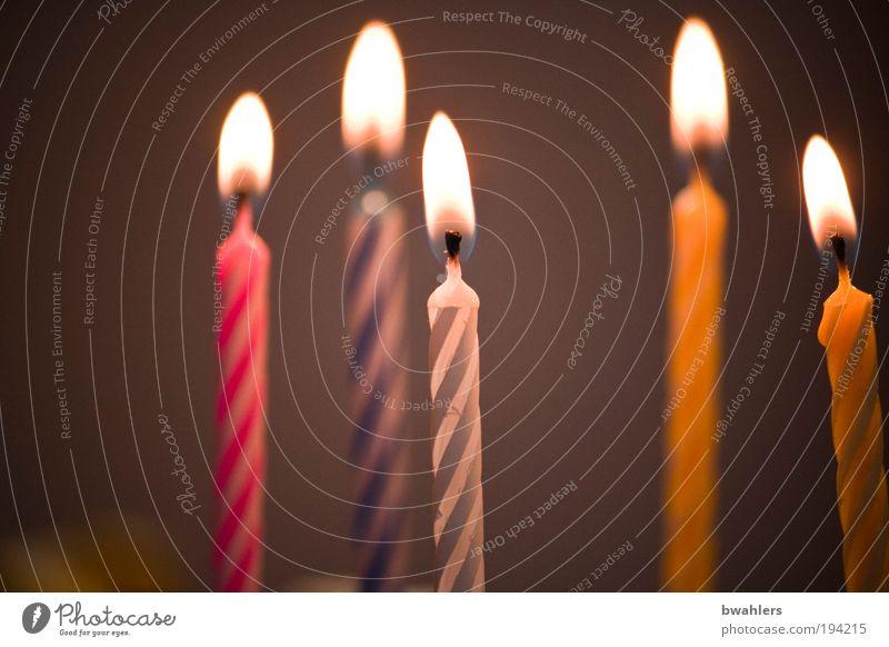 birthday Feasts & Celebrations Birthday Decoration Candle To enjoy Hot Bright Multicoloured Joy Happy Happiness Joie de vivre (Vitality) Surprise Desire