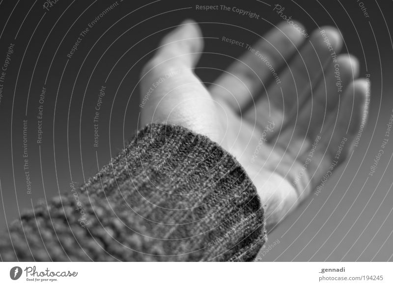 Hand Arm Elegant Arrangement Natural Esthetic Fingers Hope Safety Protection Belief Sweater Safety (feeling of) Acceptance Young man Human being