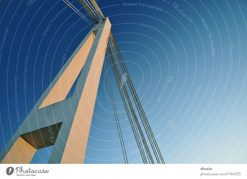 A Air Sky Cloudless sky Sunlight Climate Weather Beautiful weather Mannheim Bridge Manmade structures Architecture Transport Traffic infrastructure Hang