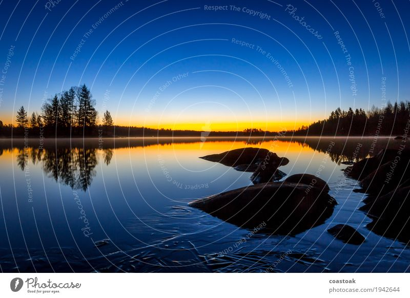 Morning mood at Salajärvi Nature Landscape Water Cloudless sky Sunrise Sunset Autumn Beautiful weather Ice Frost Tree Lakeside Finland Fresh Cold Clean