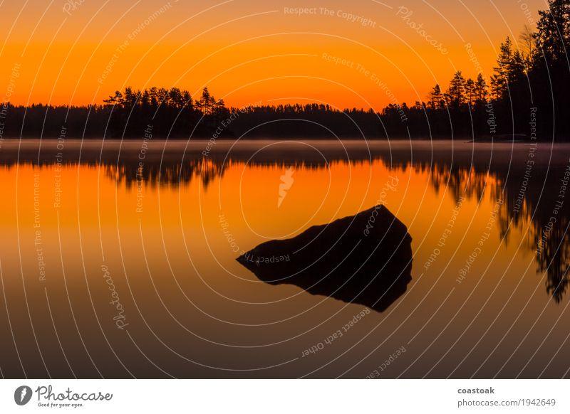 Dawn at Salajärvi Nature Landscape Water Cloudless sky Sunrise Sunset Autumn Lakeside Stone Orange Black Beginning Fog Colour photo Exterior shot Silhouette
