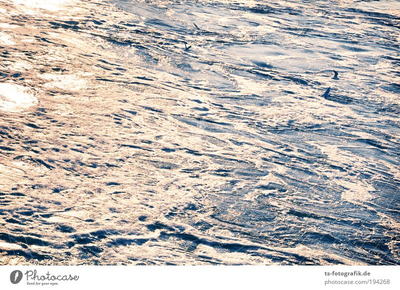 Blue Water White Ocean Joy Weather Waves Background picture Wind Elements Storm Fluid Gale Silver Flow Bad weather