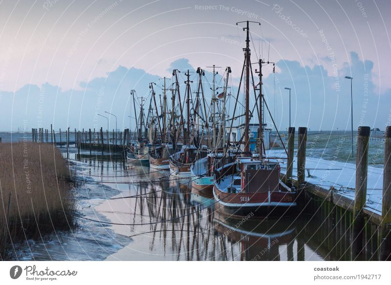Crab cutter in Dorum Fisherman Fishery Water Coast Ocean Navigation Fishing boat Shrimp Lie Firm Blue Safety Safety (feeling of) Low tide Rope Jetty