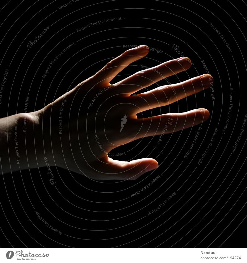 Human being Hand Dark Emotions Fingers Hope Delicate Touch Senses Blind Orientation Sensitive Caress Sense of touch