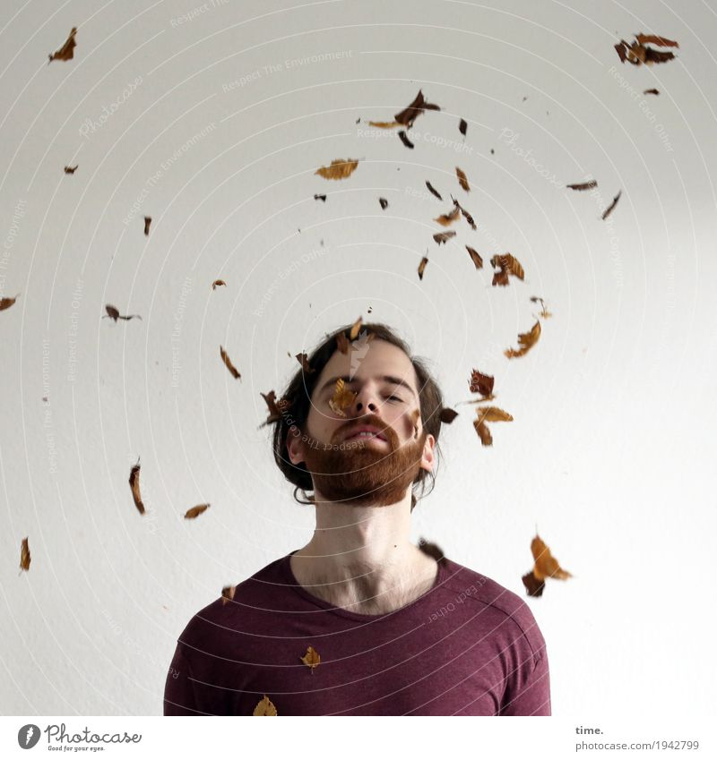 . Masculine Man Adults 1 Human being Work of art Sculpture Dance Leaf Autumn leaves T-shirt Long-haired Beard To fall Flying To enjoy Beautiful Contentment