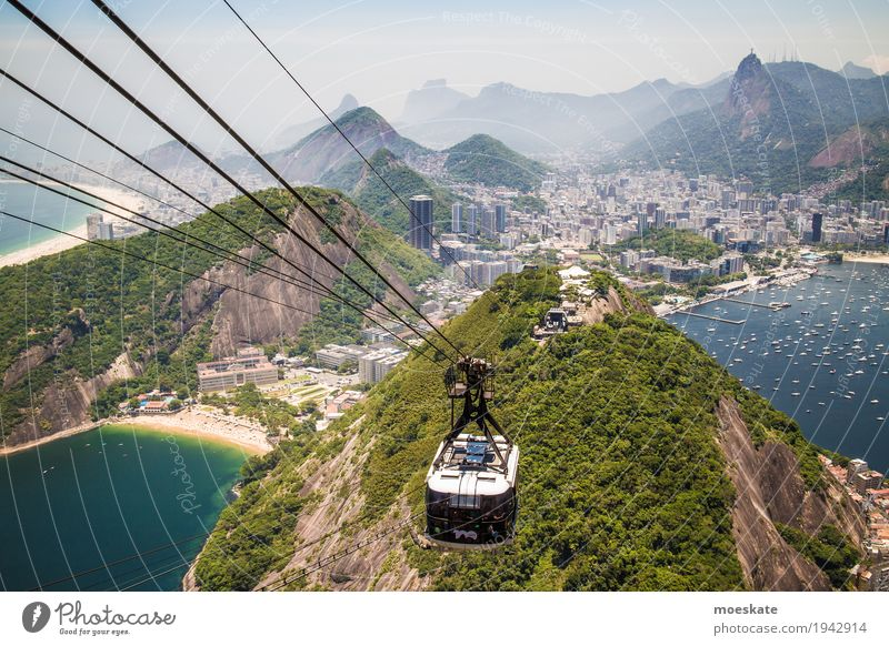 View from the sugar loaf, Rio de Janeiro Landscape Water Sky Cloudless sky Summer Virgin forest Hill Rock Mountain Peak Coast Beach Bay Ocean Town Port City