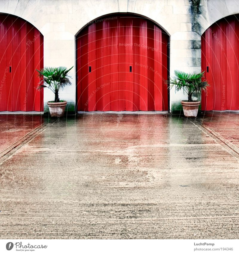 Go the whole hog Mountain Symmetry Gate Plant Flowerpot Palm tree Garage door Red Tin Concrete Wall (building) Highway ramp (entrance) Calm Fire department