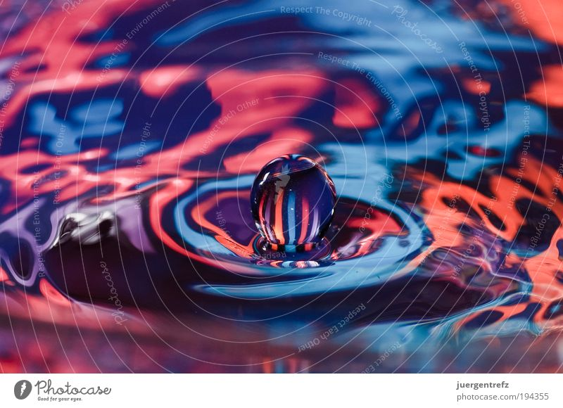water polo Water Sphere Drop Exceptional Blue Multicoloured Violet Pink Red Emotions Movement Uniqueness Colour Idea Inspiration Power Colour photo Close-up