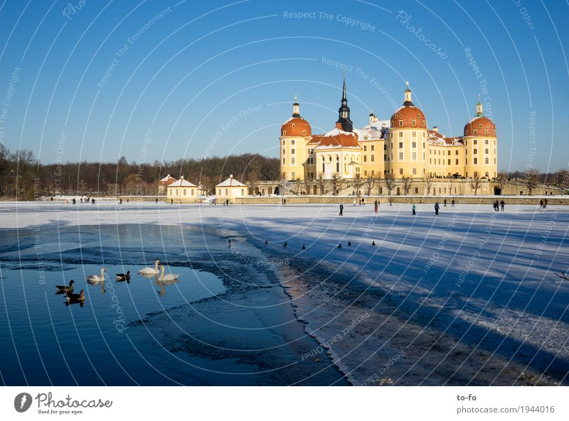 Moritzburg Architecture Populated Castle Park Manmade structures Building Tourist Attraction Landmark Moritzburg Castle Historic Rich Vacation & Travel Winter