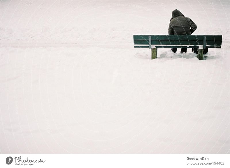 Analog Loneliness Environment Nature Climate change Weather Beautiful weather Snow Bench Breathe Think To enjoy Sustainability Green Emotions Moody Concern
