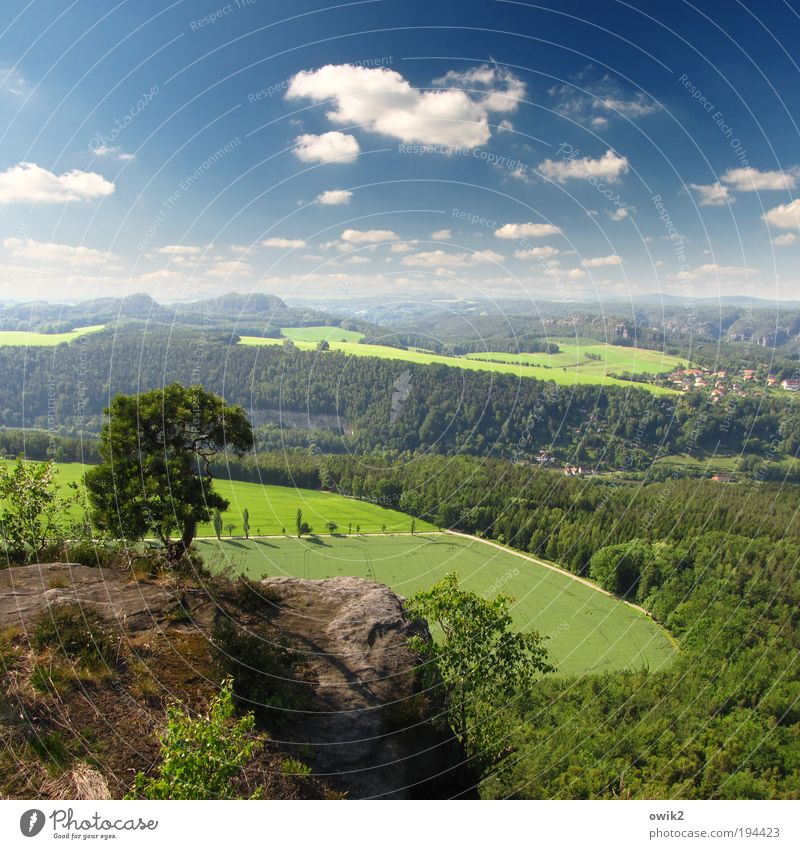 Nature Sky Tree Plant Clouds Far-off places Forest Grass Mountain Freedom Landscape Air Field Germany Weather