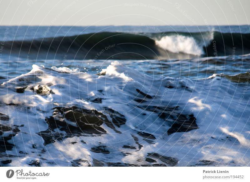 Water White Ocean Beach Environment Coast Waves Wind Power Fear Threat Gale To break (something) Foam Climate change Loud