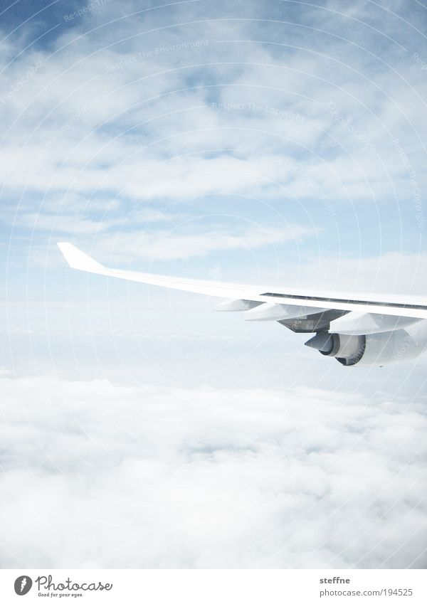 Between the clouds Sky Clouds Beautiful weather Aviation Airplane Passenger plane View from the airplane Vacation & Travel Tourism Business trip Engines Wing