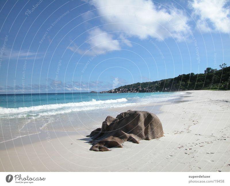 Ocean Beach Vacation & Travel Waves