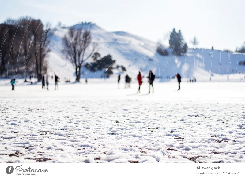 winter walk Winter Snow Life Crowd of people Cloudless sky Beautiful weather White Movement Society Idyll Cold Munich Olympic Park To go for a walk Colour photo