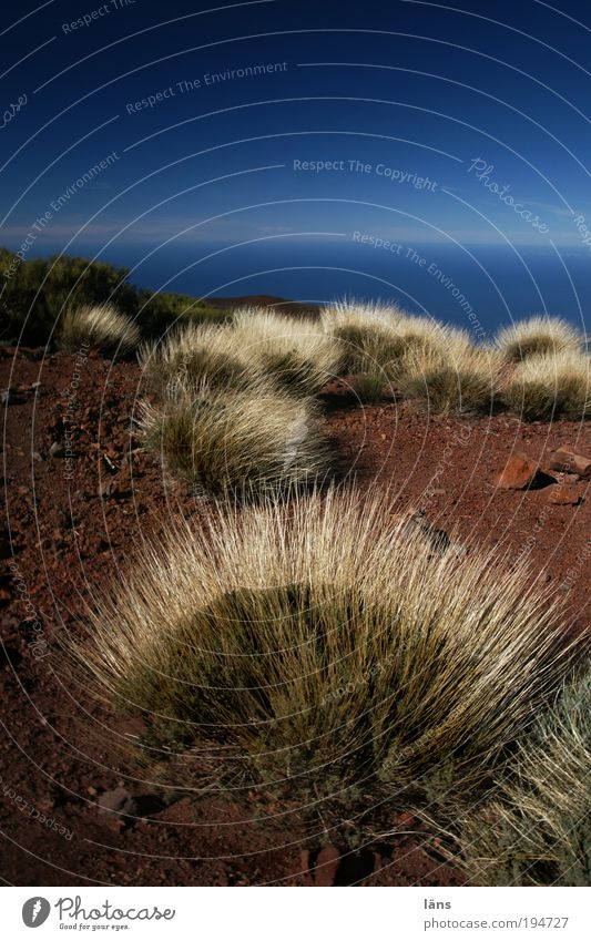 Nature Water Sky Plant Mountain Sand Landscape Air Environment Horizon Earth Bushes Change Beautiful weather Tenerife