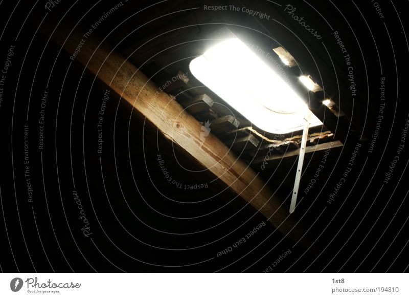 Luke Skywatcher House (Residential Structure) Manmade structures Building Architecture Skylight Window Roof Looking Illuminate Old Climate Calm Safety Hatch
