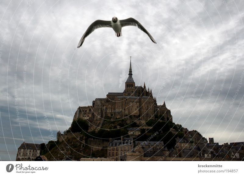 BirdPerspective Sky Clouds Storm clouds Bad weather Building Architecture Tourist Attraction Landmark Mont St. Michel Holy Flying Threat Moody France Normandie