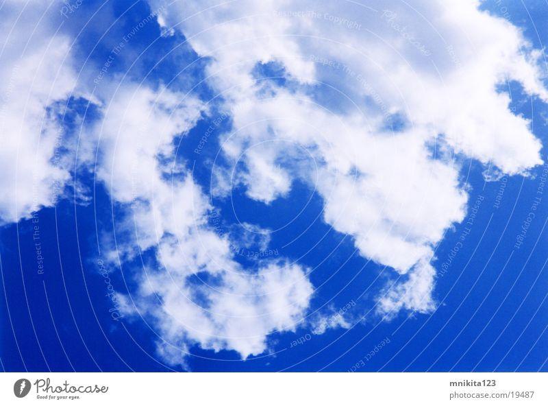 canopy Sky blue