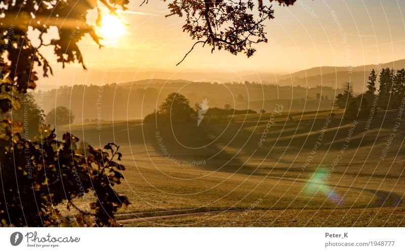 Sunrise on the Swabian Alb Environment Nature Landscape Cloudless sky Sunset Sunlight Autumn Beautiful weather Field Hill Deserted Relaxation Hiking Gold Moody