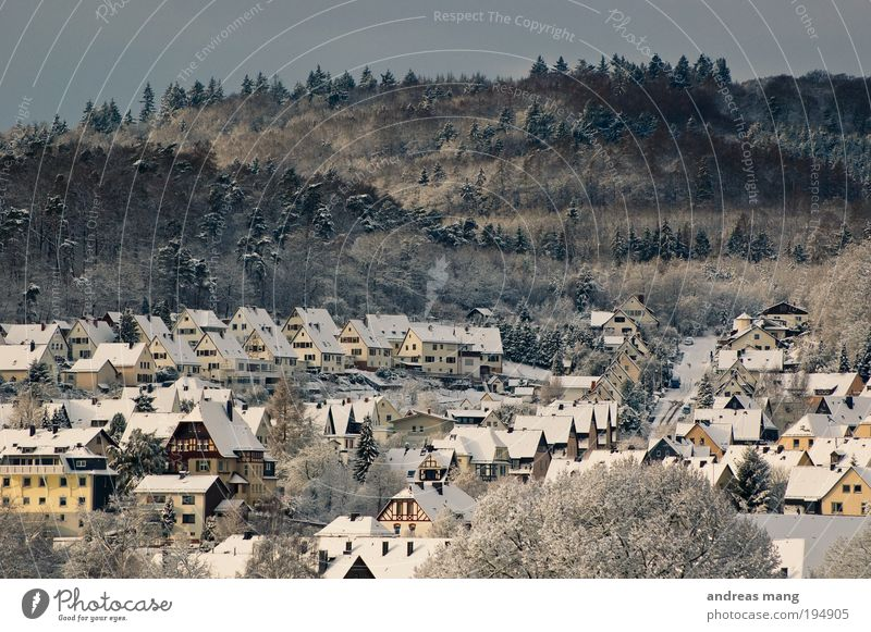 White Winter House (Residential Structure) Loneliness Forest Cold Small Roof Village Idyll Stagnating Shaft of light Morning Love of nature
