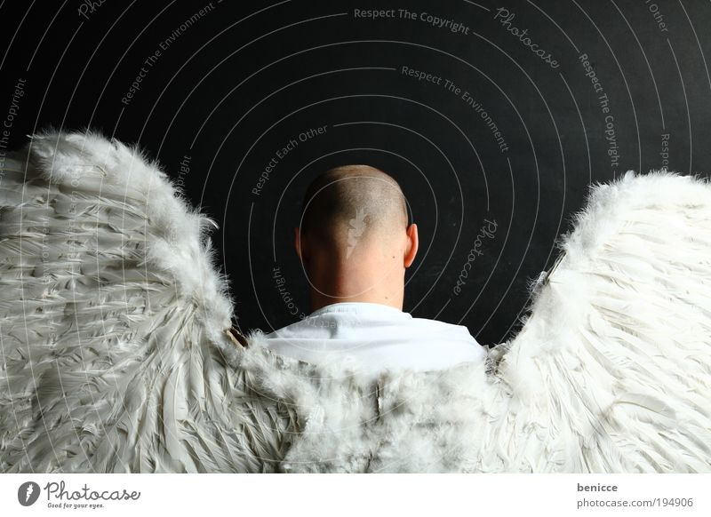 Human being Man Religion and faith Flying Back Angel Wing Protection Good Carnival Holy Carnival costume Costume Hallowe'en Catholicism Christianity
