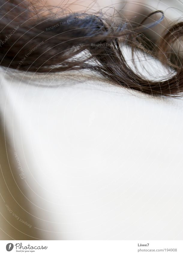 Hair, curl you... Elegant Beautiful Hair and hairstyles Well-being Contentment Relaxation Black-haired Brunette Long-haired Curl Touch Rotate Fragrance